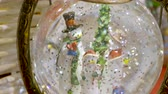 snow globe : Three snowmen inside vintage snow globe with spangles. Christmas retro toy.