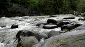 fluir : Rapid mountain river flows around Borjomi town, Georgia country. Stock Footage