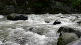 fast river : Rapid mountain river flows around Borjomi town, Georgia country. Stock Footage