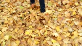 acero : Woman kicks the fallen maple leaves in park. Autumn outdoor activities. Filmati Stock