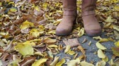 stylish : Woman standing on autumn fall ground and leaves. Female legs in brown shoes boots. 4K steadicam shot ProRes HQ codec.