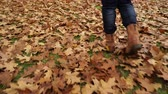 estepe : Woman walking on autumn fall grass and leaves. Closeup of female legs in brown shoes boots. 4K steadicam shot ProRes HQ codec.