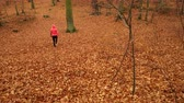 pressão : Woman warming up in autumn fall park forest. Young girl with smartphone armband activity tracker. Fitness technology. 4K steadicam shot ProRes HQ codec.