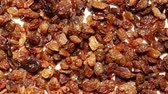 rozinky : Raisin dried grape as food background 4K
