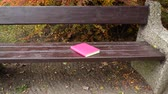 acessibilidade : Nobody. Bookin pink cover lying on bench in autumn park. Leisure, education, literature and relax concept. 4K steadicam shot ProRes HQ codec