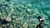 to take : Photo camera on sea shore and clear water Stock Footage