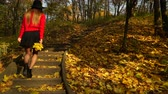 se movendo para cima : Woman girl walking on stairs in autumn park forest. 4K ProRes HQ codec. Vídeos