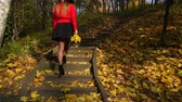 estepe : Woman girl walking on stairs in autumn park forest. 4K ProRes HQ codec. Vídeos