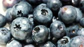 amoras : Closeup of blackberry fruits blueberries as background 4K