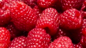 framboesa : Fresh raspberry fruits as food background 4K