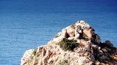 grego : Greek coastline on Peloponnese, Mani Peninsula
