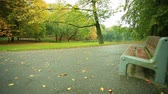 Bench in the autumn park, with motorized slider