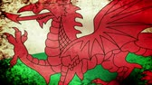 union : Wales Flag Waving, grunge look