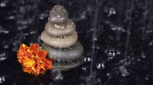 meditation : Rock cairn and flower under the rain, side view.HD