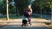 baby carriage : Mom with baby, lying in a stroller on an evening walk. Urban landscape.