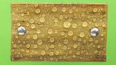 ネジ : Wind shakes water drops on a wooden board with iron bolts, isolated. 動画素材