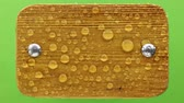 bout : Wind blows on raindrops on a light wooden board with iron bolts. Isolated on green background.