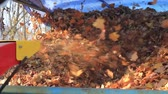 limpar : exhaust pipe with fall foliage Stock Footage