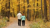 november : Elderly Couple Walking In Autumn Forest