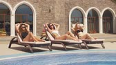 Young gorgeous fit women relaxing on the hotel deckchairs under the sun. Pretty happy suntanned models wearing swimsuits and sunglasses sunbathing near the hotel pool. Slow motion