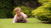 Cute baby girl crawling and playing in the green grass near the bush outside.