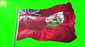 bermudas : Bermuda flag seamless looping 3D rendering video. 3 in 1: Includes isolated on green screen and alpha channel as luma matte for easy clipping in AE. Beautiful textile cloth fabric waving