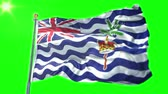 estilizado : British Indian Ocean Territory flag seamless looping 3D rendering video. 3 in 1: Includes isolated on green screen and alpha channel as luma matte for easy clipping in AE. Beautiful textile cloth fabric waving