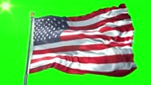 brasão : Unites States flag seamless looping 3D rendering video. 3 in 1: isolated clipping in ae. Beautiful textile cloth loop waving Stock Footage
