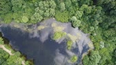 diretamente acima : Top view of a beautiful forest lake. Aerial video shooting.