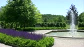 garden flowers : English style garden. Moving panorama of a English style garden with fountain.
