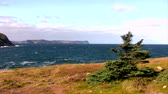 Typical look of Newfoundland, Canada Coast Line during the Fall.