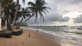 elefante : Hikkaduwa, Sri Lanka, palm trees on the indian Ocean 4K