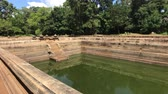 신성한 : Anuradhapura, Sri Lanka, left of the basin with water 4K 무비클립