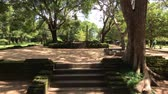 indiano : Anuradhapura, Sri Lanka, view of the stairs and ruins in the Royal Park 4K Stock Footage