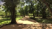 Будда : Anuradhapura, Sri Lanka, view of the Park near Dagoba from afar 4K Стоковые видеозаписи