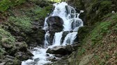 thrift : Cascade rapid waterfall in mountains