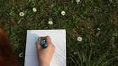 propiska : Female hand writing YES|NO on paper laying green spring grass on sunny day