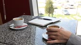 organizador : Woman having a coffee in cafe while making notes in daily planner business agenda Vídeos