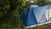 шестерня : Tourist tent set up in forest Стоковые видеозаписи