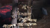deshidratado : Porcini edible mushrooms Boletus Edulis being dried naturally by indoor open fire smoke in mountain hut