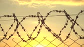 tutuklu : Wire metalic border at sunset, border zone, security territory, 4k Stok Video