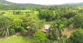Aerial view on exotic palm tree forest a paradise place with a small village in the middle. 4k