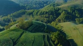 деревня : Sunrise aerial view of the foggy forest, in Apuseni Mountains