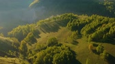 сельскохозяйственных животных : Aerial view above the rural hills in Apuseni Mountains, Romania