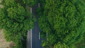 caminho : Aerial view over the road with trees on the both sides in the middle of the field and cars driving