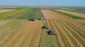 рожь : Summer view of combine harvester machine, in the romanian fields. Aerial view of harvesters Стоковые видеозаписи