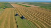 semente : Summer view of combine harvester machine, in the romanian fields. Aerial view of harvesters Stock Footage
