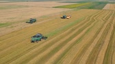 tahıl : Summer view of combine harvester machine, in the romanian fields. Aerial view of harvesters Stok Video