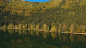 Autumn landscape of the colorful forest, at the mountain lake edge, with beautiful reflexions Vidéos Libres De Droits
