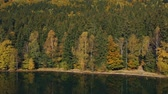 outono : Autumn landscape of the colorful forest, at the mountain lake edge, with beautiful reflexions Stock Footage